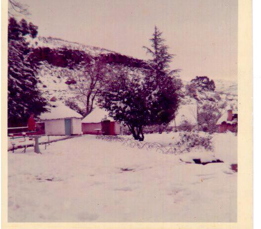 1965 St Bernard's Peak snow courtesy of Claire Worrall Milazzo