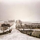 Snow Report: Snow Photos for 27/28 June 2015