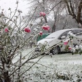 Snow Sightings: Eastern Cape and KZN Sat, 30 April 2016