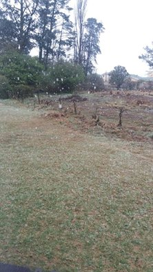 Werner Pelser says it is beginning to snow in Franklin, Kokstad [7am]