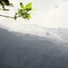 First Snow Photos of June 2017