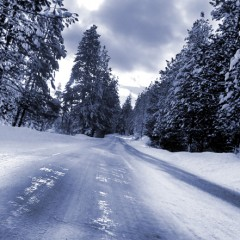 Sightseeing in The Snow – Travel Safe